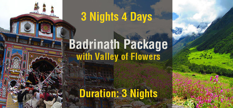 Badrinath Tour Package with Valley of Flowers