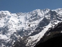 Helicopter flying towrads Kedarnath Temple
