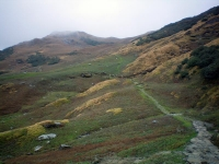 Trek route to Rudranath from sagar Village