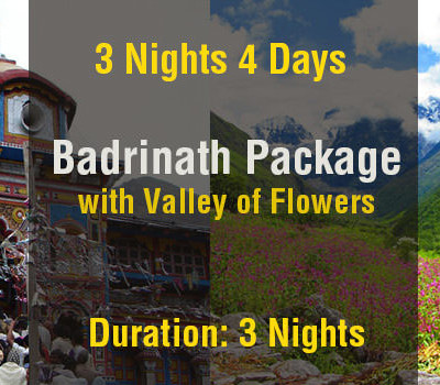 3 Nights Badrinath Package with Valley of Flowers