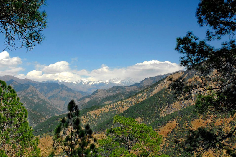 view from Barkot Camp